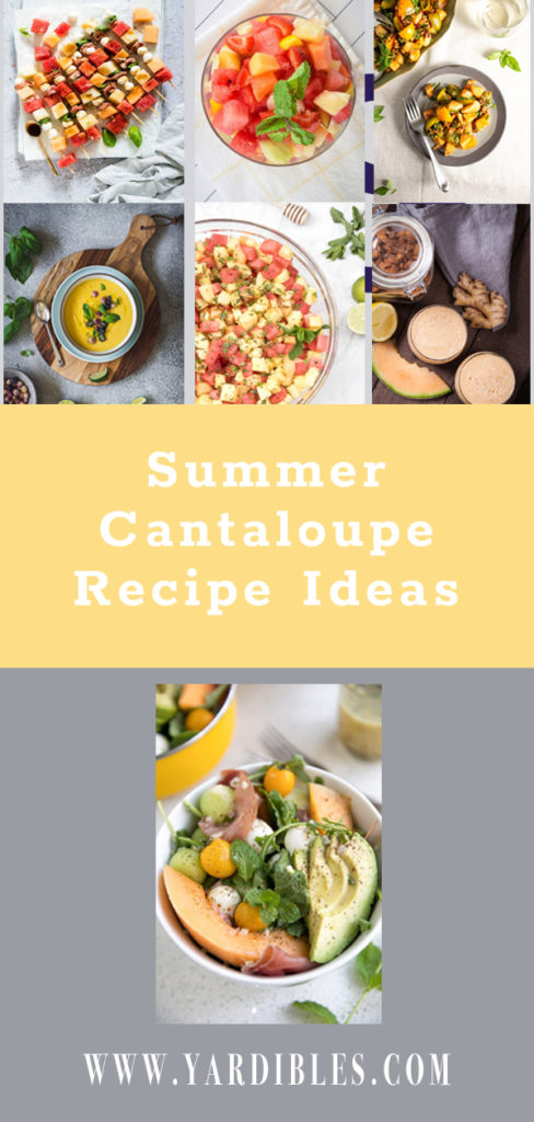 8 tasty cantaloupe recipes